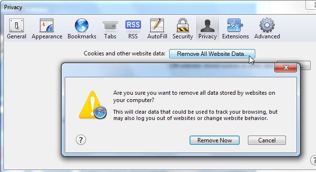 privacidade safary remover todos os dados website